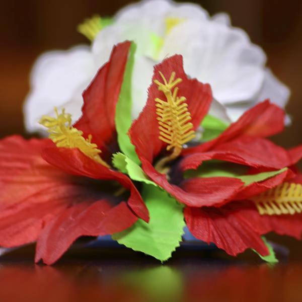 Flor de Pelo